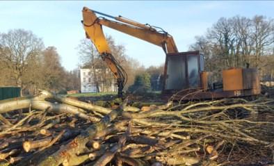 VERSTERKING GEVRAAGD: amper drie natuurinspecteurs voor heel Limburg