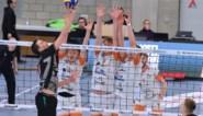 Aalst kan niet stunten in CEV Cup volley en sneuvelt in kwartfinales