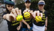 Amnesty International bestookt ambassade van Saudi-Arabië met golfballen