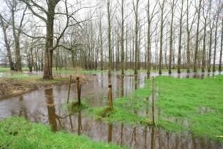 Grondwatervoorraad weer op peil door overvloedige neerslag van voorbije weken