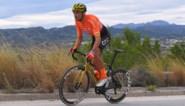 """Greg Van Avermaet: """"De Ronde van Vlaanderen? Terug kunnen koersen vanaf 1 juni lijkt mij realistischer"""""""