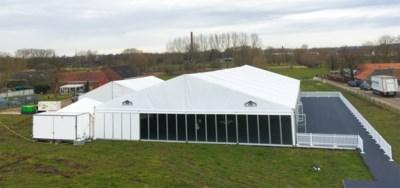 """Tentenbouwer ziet topmaand sneuvelen: """"Voor 5.000 vierkante meter aan tenten door de neus geboord"""""""
