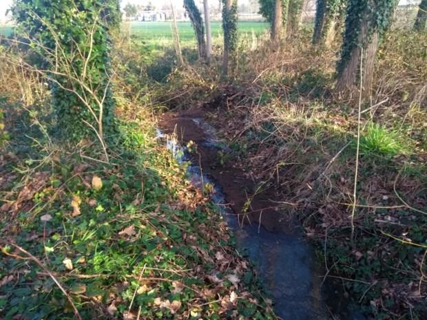 Veldhouwerbeek vervuild met stookolie