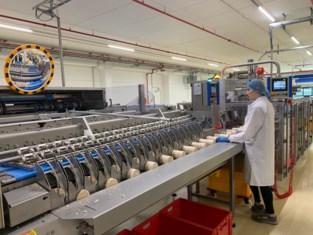"""Ook rijstwafels blijken populair bij hamsteraars, fabriek draait op volle toeren: """"Nog nooit zo veel orders binnengekregen"""""""
