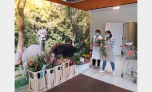 """Bloemenverkoopster Karine schenkt duizenden bloemen weg aan rusthuis en instellingen: """"Ondanks de crisis was dat toch een gelukkig moment"""""""