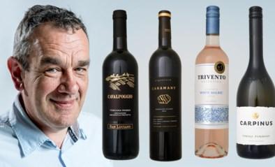 Onze wijnkenner Alain Bloeykens selecteert vier rariteiten die het hele jaar door kunnen gedronken worden