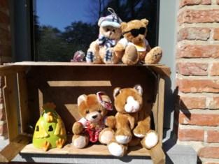 Ook in Tremelo kijken de beertjes door het raam naar buiten