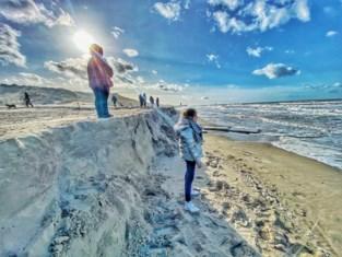 Vergeet dijken en golfbrekers: mosselen zijn nieuw wapen in klimaatopwarming