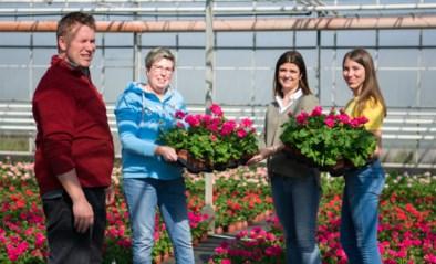 """Siertelers lanceren besteldienst: """"Bloemen weggeven is mooi, maar je wordt er niet beter van"""""""