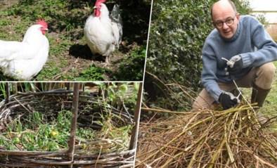 Tuinklusjes voor een goed begin van de lente (en je hoeft niet naar het recyclagepark)