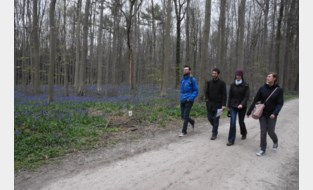 Politie en boswachters controleren in Hallerbos