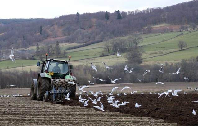Al meer dan 1.200 'coronavacatures' bij de VDAB: vooral in voedings- en landbouwsector
