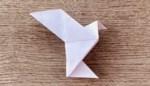 Origami for life: laat je gaan met papier, ten voordele van Erasmusziekenhuis