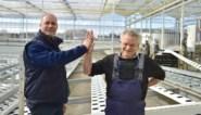 """Vader en zoon leveren dubbel gevecht: """"Als onze seizoensarbeiders niet op tijd hier geraken, dreigt een ramp"""""""
