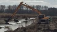 Eindelijk weer droog genoeg: Saneringswerken het Vinne herstart maar dat is slecht nieuws voor de broedvogels