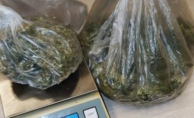 Anonieme politie aan de grens levert meerdere drugsvangsten op