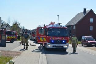 Tuinhuis uitgebrand in Bieststraat