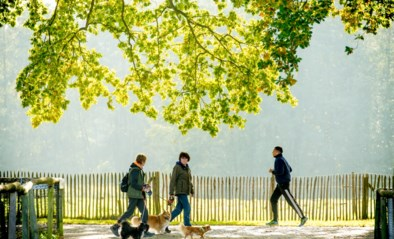 De verleiding wordt groot: aangename zomerdagen met 20 graden in zicht