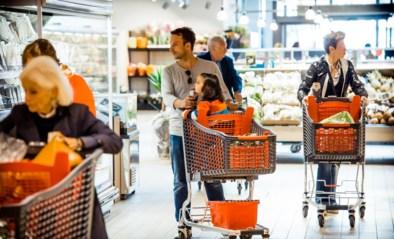 """Delhaize geeft iedereen 5 procent korting op alles: """"De prijzenoorlog is opnieuw begonnen"""""""