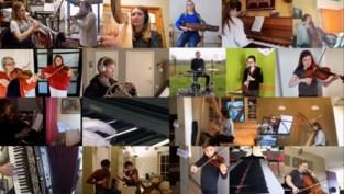 """Maar liefst 75 muzikanten uit dertien landen spelen virtueel 'Lockdown Waltz' van componist Bert in: """"Nog meer dan anders verbindt muziek nu de mensen"""""""