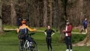 Coronarichtlijnen opnieuw aangepast: jonge gezinnen en ouderen mogen de auto nemen, zitten in het park mag niet