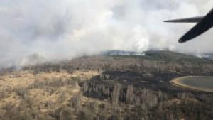 Radiatiepieken 16 keer hoger dan normaal na bosbrand nabij Tsjernobyl