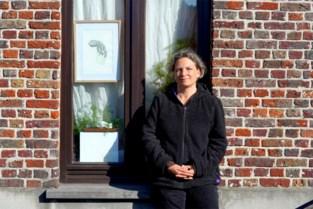 Na de beren is er nu een oproep voor 'kunstjacht' achter Gentse ramen