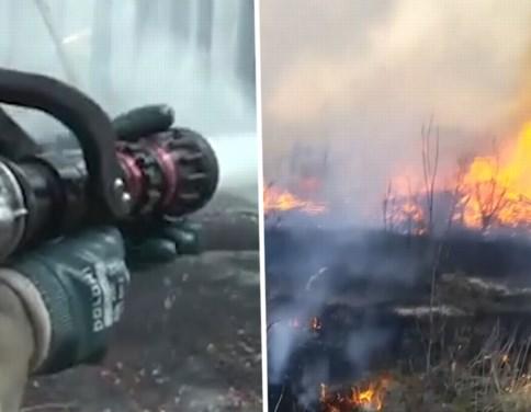 Brandweer krijgt vlammen niet onder controle: vrees voor verhoogde radioactiviteit door bosbranden Tsjernobyl
