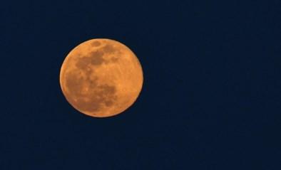 """Gemengde reacties op grootste supermaan van het jaar: """"Zelfs de maan heeft nu een mondkapje"""""""