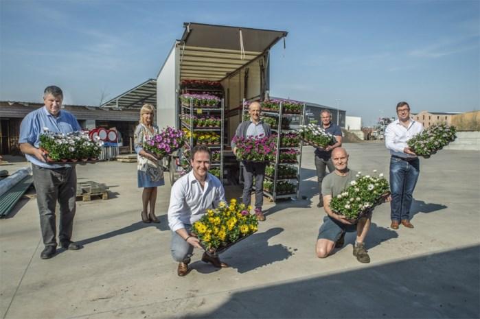 Burgemeester koopt 700 bloemen en daagt andere gemeenten uit