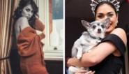 Miss Engeland legt kroontje neer en gaat aan de slag als dokter