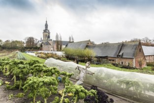 """Stad roept op om voeding te kopen recht van bij de boer: """"Gezond en je steunt er de boeren mee"""""""