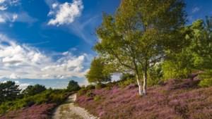 Uittip als reizen weer mag: het eerste 'super' natuurreservaat in het Verenigd Koninkrijk
