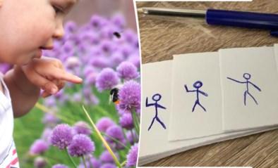 Tips voor ouders: teken je eigen filmpje en ga op safari in je eigen tuin