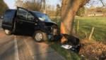 Zestiger uit Hasselt kritiek na botsing met voertuig tegen boom in Zonhoven