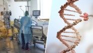 """Waarom coronavirus zwaar toeslaat in Italië maar veel minder in Oost-Europa: """"Ligt niet aan het virus, wel aan de mensen"""""""