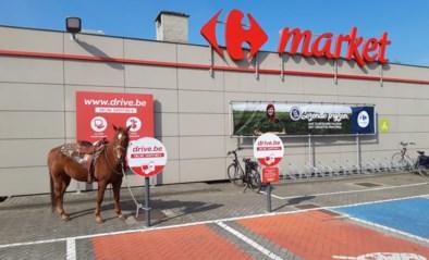 """Ruiter gaat te paard boodschappen doen in supermarkt: """"Dit is wel degelijk een essentiële verplaatsing"""""""