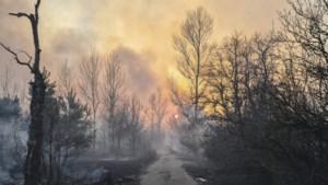 Bosbrand Tsjernobyl woedt al 6 dagen: bezorgdheid over straling