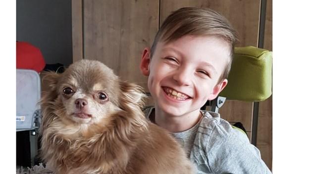 """Vzw zamelt geld in zodat hondje van jongen met hersenletsel geopereerd kan worden: """"Meneer Dwiezel nestelt zich altijd bij Eamon"""""""