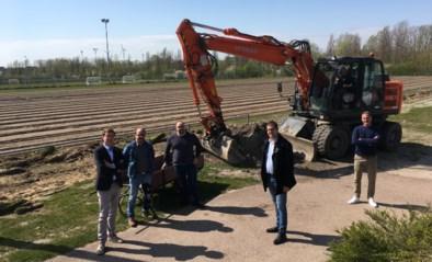 Voetbalploeg FC Rupel-Boom krijgt kunstgrasvelden
