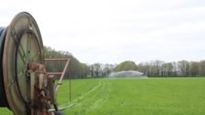 Grondwater in een derde van de meetplaatsen opnieuw laag