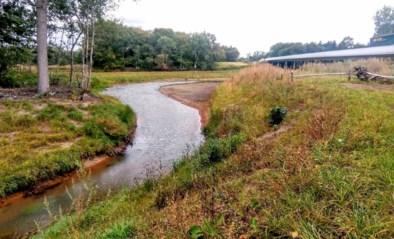 Onteigeningen om met bredere Nete-oevers overstromingsgebied te maken