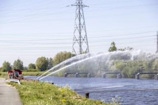 """Afvalwater van Frans bedrijf bedreigt vissen in Schelde: """"De grootste vervuiling die ik ooit zag, een ecologisch drama"""""""