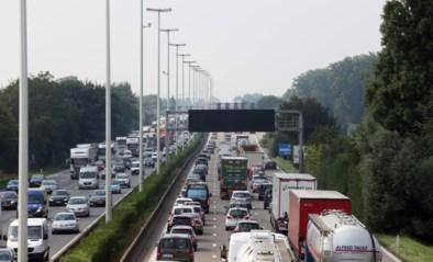 Wegen en Verkeer pakt E313 tussen Wommelgem en Ranst aan tijdens coronacrisis