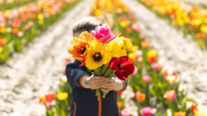 """N-VA gaat nog stapje verder met 'uitgestelde Moederdag': """"Leg de bloemetjes voor de deur"""""""