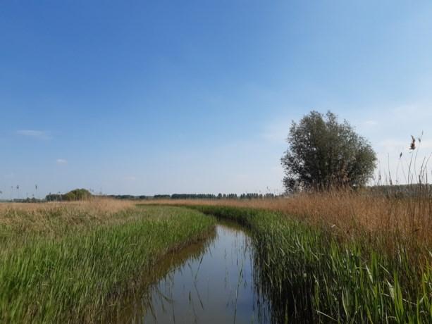 67.873 euro subsidie voor aankoop natuurgebied in Boekhoute