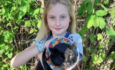 Marit (10) en haar vrienden helpen vogels redden dankzij een kleurrijk kraagje: