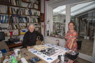 Chinese professor verdiende grof geld met kopieerde werken van Vlaamse kunstschilder Christian en die pikt dat niet meer