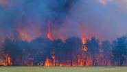 Code voor brandgevaar afgezwakt naar oranje in Limburg en geel in Antwerpen
