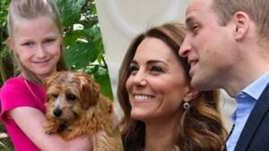 ROYALS. Kate en William hebben iets te vieren en prinses draagt Zara-jurk